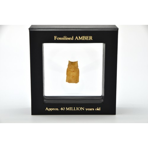Baltic amber figure with box