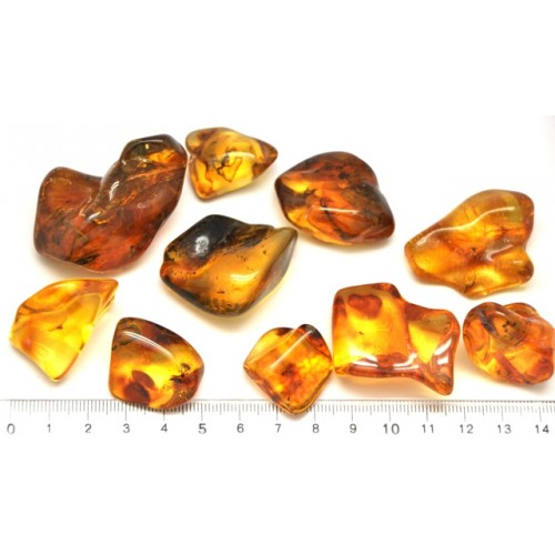 Lot of 10 natural shapes Baltic amber stones with insect